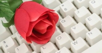 artificial red rose and keyboard close up